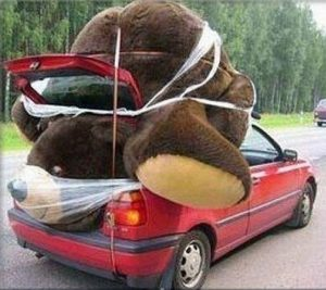 http://briff.me/wp-content/uploads/2015/02/Big-Teddy-Bear-for-Valentines-Day-14-Small-Car.jpg