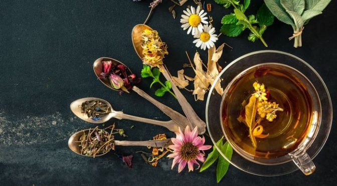 43283052 - cup of herbal tea with wild flowers and various herbs